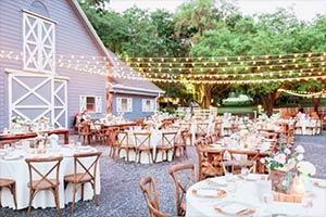 Venue - The Lange Farm